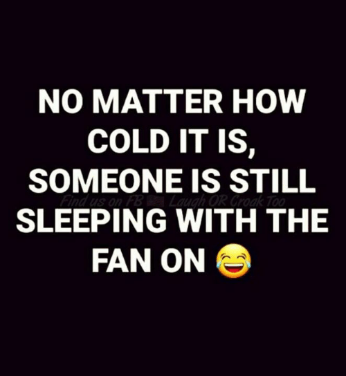 Memes, Sleeping, and Cold: NO MATTER HOW  COLD IT IS,  SOMEONE IS STILL  SLEEPING WITH THE  FAN ON