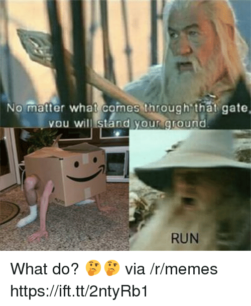 Memes, Run, and Gate: No matter what comes through that gate  you will stand your ground  RUN What do? 🤔🤔 via /r/memes https://ift.tt/2ntyRb1