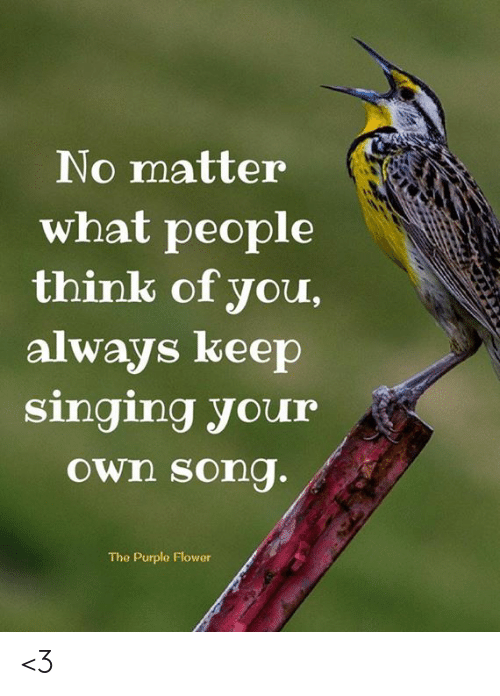 Memes, Singing, and Flower: No matter  what people  think of you,  always keep  singing your  Own song.  The Purple Flower <3