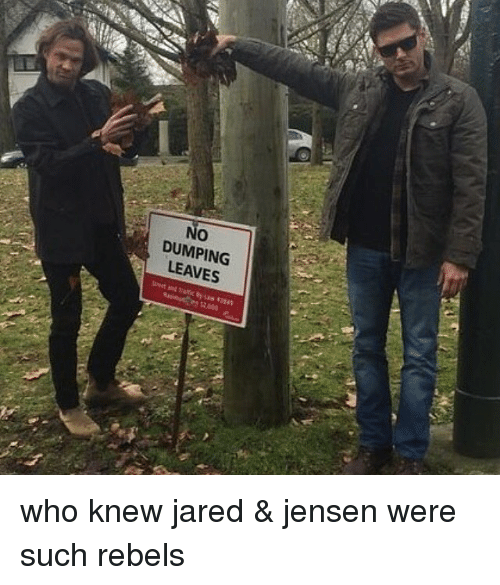 jareds: No  O  DUMPING  LEAVES who knew jared & jensen were such rebels