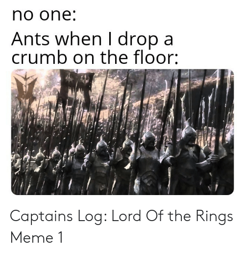 Lord of the Rings: no one  Ants when I dropa  crumb on the floor: Captains Log: Lord Of the Rings Meme 1