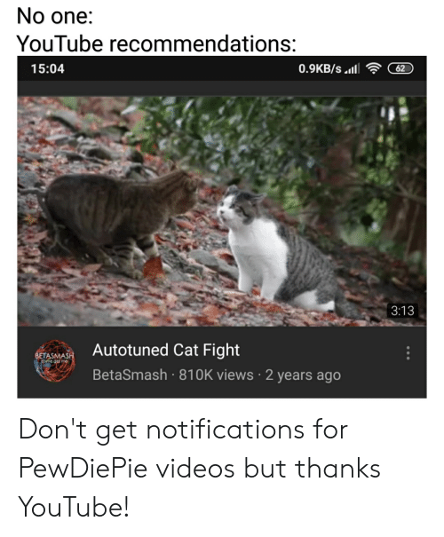 cat fight: No one:  YouTube recommendations:  15:04  3:13  SETAMAAutotuned Cat Fight  BetaSmash 810K views 2 years ago Don't get notifications for PewDiePie videos but thanks YouTube!