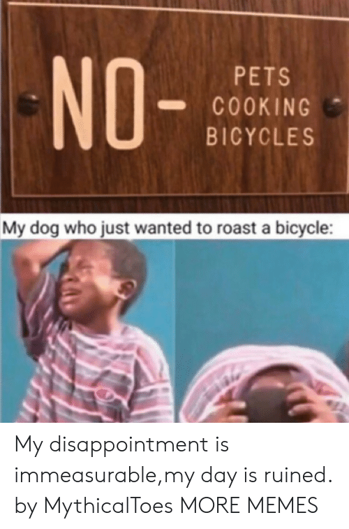 Dank, Memes, and Roast: NO-  PETS  COOKING  BICYCLES  My dog who just wanted to roast a bicycle My disappointment is immeasurable,my day is ruined. by MythicalToes MORE MEMES