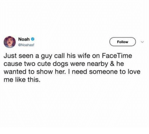 cute dogs: Noah  Follow  Noahast  Just seen a guy call his wife on FaceTime  cause two cute dogs were nearby & he  wanted to show her. I need someone to love  me like this.