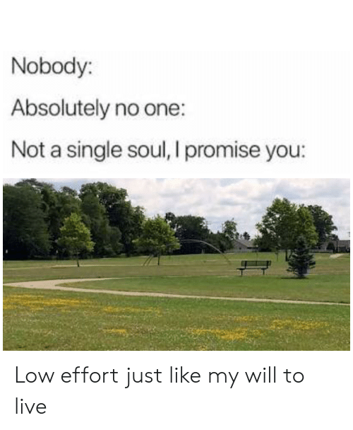 Reddit, Live, and Single: Nobody:  Absolutely no one:  Not a single soul, I promise you: Low effort just like my will to live