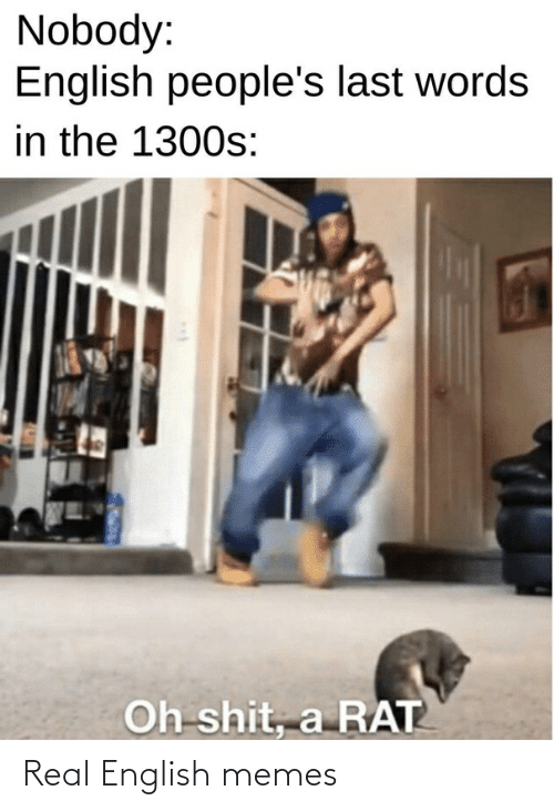 English Memes: Nobody:  English people's last words  in the 1300s:  Oh shit, a RAT Real English memes