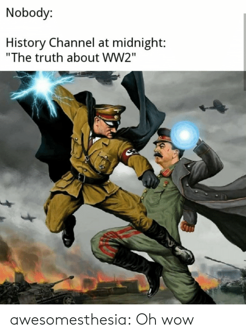 "at midnight: Nobody:  History Channel at midnight:  ""The truth about WW2"" awesomesthesia:  Oh wow"