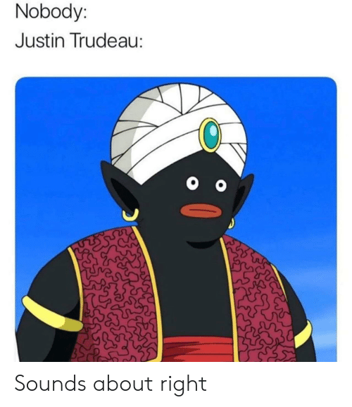 Sounds About Right: Nobody:  Justin Trudeau: Sounds about right