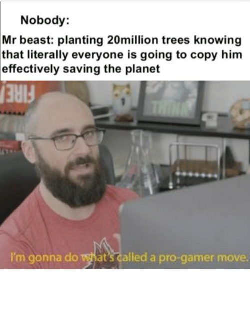 Pro Gamer: Nobody:  Mr beast: planting 20million trees knowing  that literally everyone is going to copy him  effectively saving the planet  THIN  FIRE  I'm gonna do what's called a pro-gamer move. Such pro gamers
