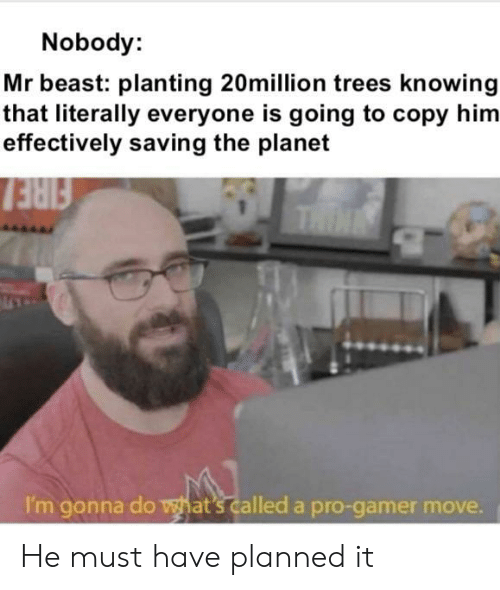 Pro Gamer: Nobody:  Mr beast: planting 20million trees knowing  that literally everyone is going to copy him  effectively saving the planet  FIRE  THIN  I'm gonna do what's called a pro-gamer move. He must have planned it