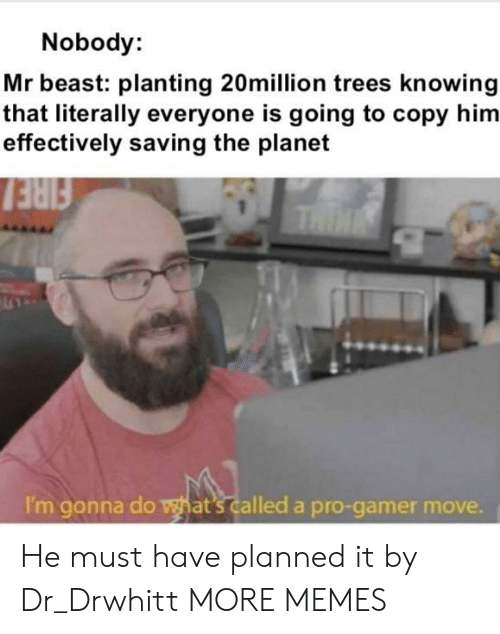 Pro Gamer: Nobody:  Mr beast: planting 20million trees knowing  that literally everyone is going to copy him  effectively saving the planet  FIRE  THIN  I'm gonna do what's called a pro-gamer move. He must have planned it by Dr_Drwhitt MORE MEMES