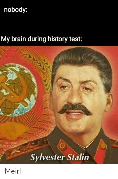 sylvester: nobody:  My brain during history test:  0  Sylvester Stalin Meirl