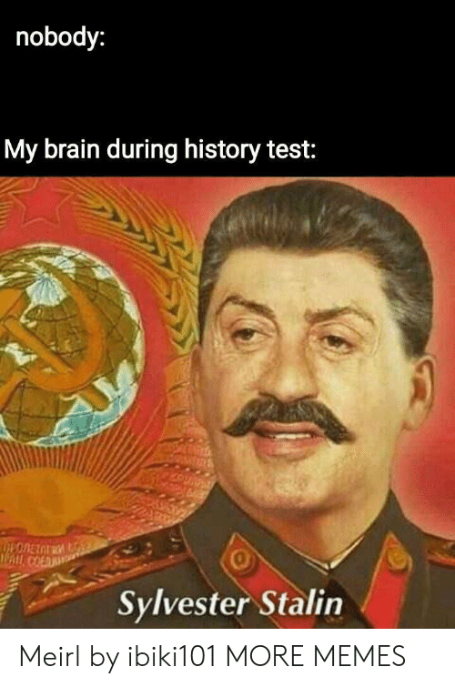 sylvester: nobody:  My brain during history test:  0  Sylvester Stalin Meirl by ibiki101 MORE MEMES