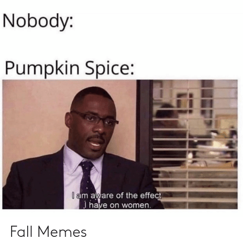 Pumpkin: Nobody:  Pumpkin Spice:  l am aware of the effect  have on women Fall Memes