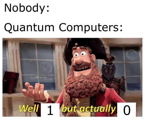Computers: Nobody:  Quantum Computers:  u/DiscoStu42  Well 1but actually 0