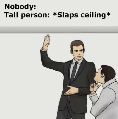 Person, Nobody, and  Tall: Nobody:  Tall person: *Slaps ceiling*