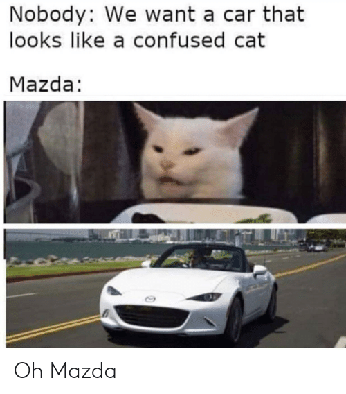 Confused, Mazda, and Cat: Nobody: We want a car that  looks like a confused cat  Mazda: Oh Mazda