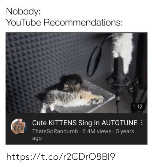 recommendations: Nobody:  YouTube Recommendations:  1:12  Cute KITTENS Sing In AUTOTUNE  ThatsSoRandumb 6.4M views 5 years  ago https://t.co/r2CDrO8Bl9
