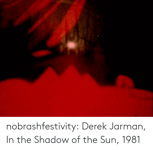 shadow: nobrashfestivity:  Derek Jarman, In the Shadow of the Sun, 1981