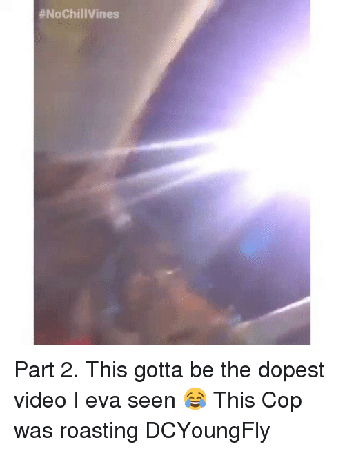 Dcyoungfly:  #NoChill Vines Part 2. This gotta be the dopest video I eva seen 😂 This Cop was roasting DCYoungFly