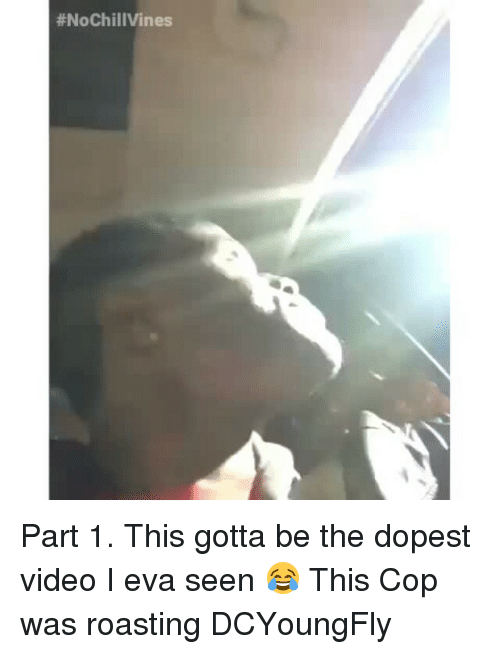 Dcyoungfly: Part 1. This gotta be the dopest video I eva seen 😂 This Cop was roasting DCYoungFly