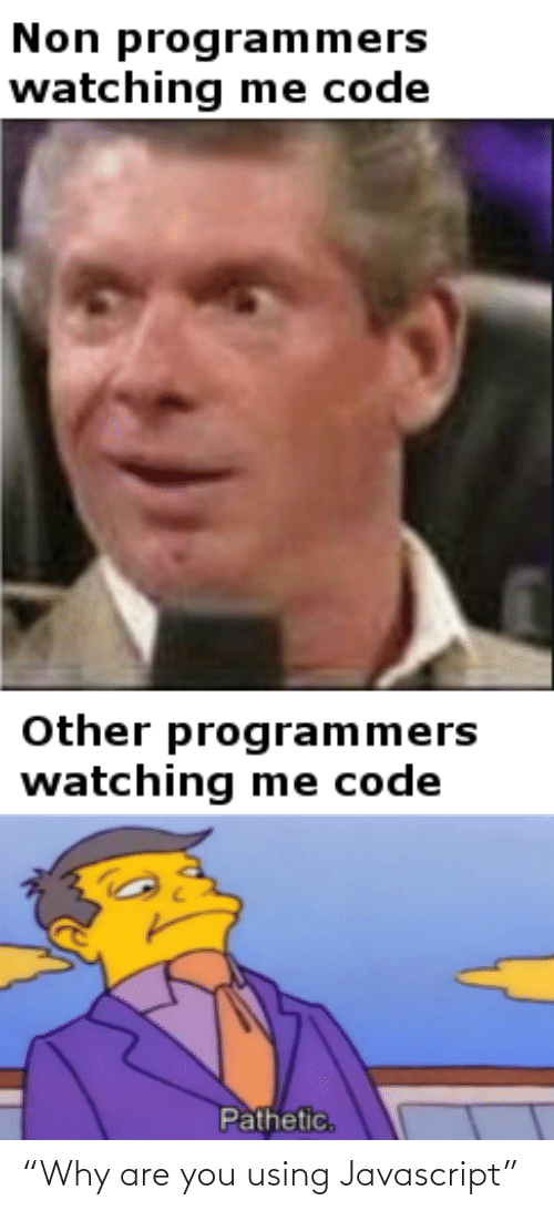 "Non: Non programmers  watching me code  Other programmers  watching me code  Pathetic, ""Why are you using Javascript"""