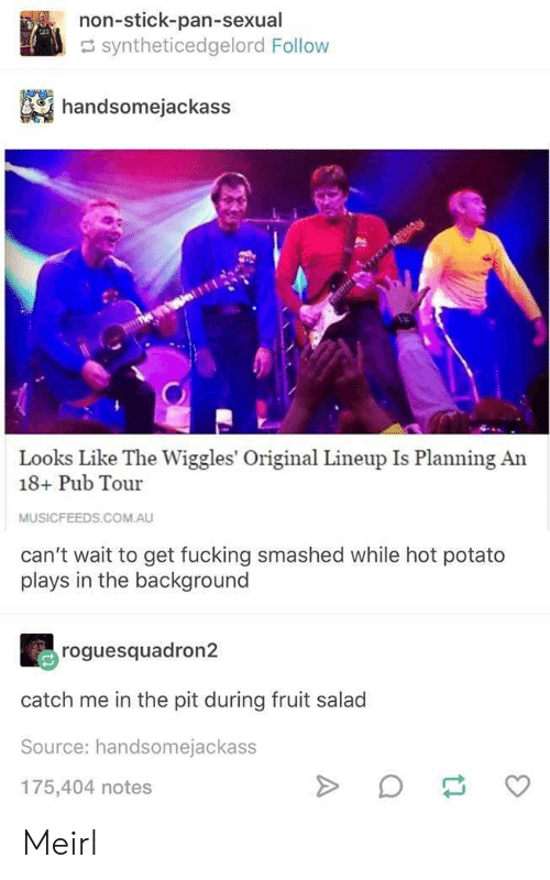 the wiggles: non-stick-pan-sexual  syntheticedgelord Follow  handsomejackass  Looks Like The Wiggles' Original Lineup Is Planning An  18+ Pub Tour  MUSICFEEDS.COM.AU  can't wait to get fucking smashed while hot potato  plays in the background  roguesquadron2  catch me in the pit during fruit salad  Source: handsomejackass  175,404 notes Meirl