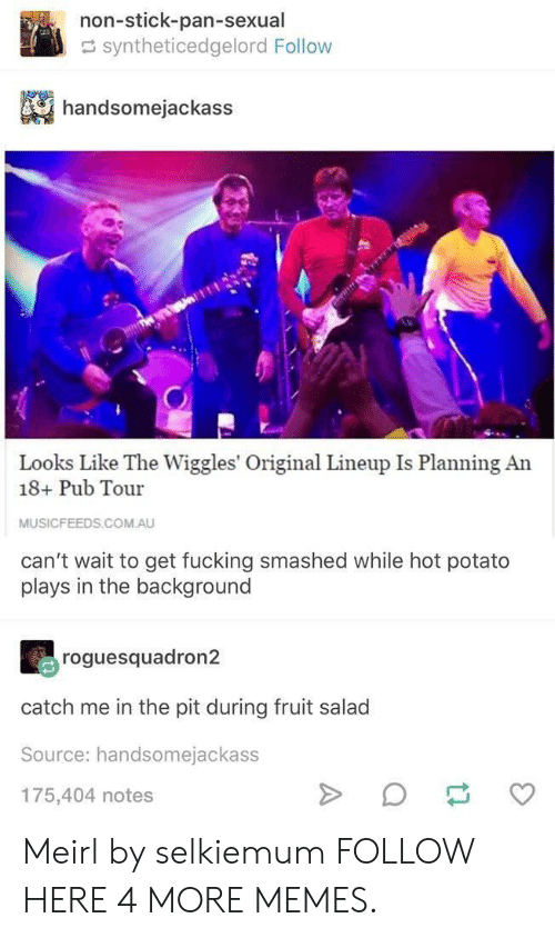 the wiggles: non-stick-pan-sexual  syntheticedgelord Follow  handsomejackass  Looks Like The Wiggles' Original Lineup Is Planning An  18+ Pub Tour  MUSICFEEDS.COM.AU  can't wait to get fucking smashed while hot potato  plays in the background  roguesquadron2  catch me in the pit during fruit salad  Source: handsomejackass  175,404 notes Meirl by selkiemum FOLLOW HERE 4 MORE MEMES.