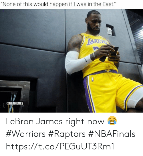 "Los Angeles Lakers, LeBron James, and Memes: ""None of this would happen if I was in the East.""  LAKERS  @NBAMEMES LeBron James right now 😂  #Warriors #Raptors #NBAFinals https://t.co/PEGuUT3Rm1"