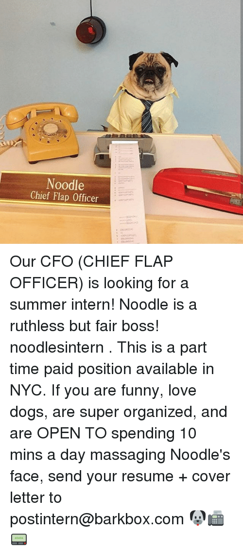 massaging: Noodle  Chief Flap Officer Our CFO (CHIEF FLAP OFFICER) is looking for a summer intern! Noodle is a ruthless but fair boss! noodlesintern . This is a part time paid position available in NYC. If you are funny, love dogs, are super organized, and are OPEN TO spending 10 mins a day massaging Noodle's face, send your resume + cover letter to postintern@barkbox.com 🐶📠📟