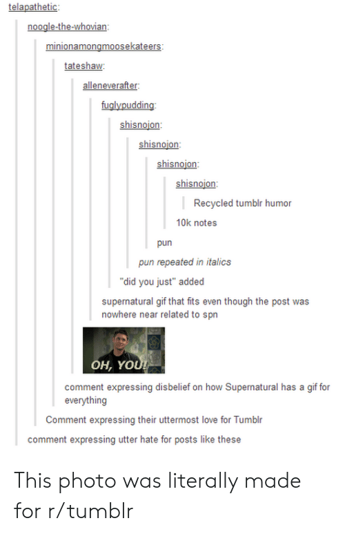 """Gif, Love, and Tumblr: noogle-the-whovian  tateshaw  alleneverafter:  fuglypudding  shisnojon  shisnojon:  shisnoion:  hin  Recycled tumblr humor  10k notes  pun  pun repeated in italics  """"did you just"""" added  supernatural gif that fits even though the post was  nowhere near related to spn  OH, YO  comment expressing disbelief on how Supernatural has a gif for  everything  Comment expressing their uttermost love for Tumblr  comment expressing utter hate for posts like these This photo was literally made for r/tumblr"""