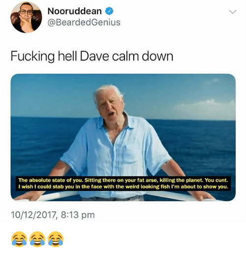 Fucking, Weird, and Cunt: Nooruddean  @BeardedGenius  Fucking hell Dave calm down  The absolute state of you. Sitting there on your fat arse, killing the planet. You cunt.  I wish I could stab you in the face with the weird looking fish I'm about to show you.  10/12/2017, 8:13 pm 😂😂😂
