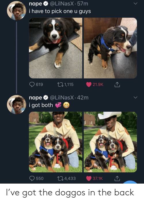 Nope, Back, and Got: nopeQ @LilNasX-57m  i have to pick one u guys  0619  t: 1,115-21.9K  nope @LilNasX - 42m  i got both  0550 t 4,433 37.1K I've got the doggos in the back