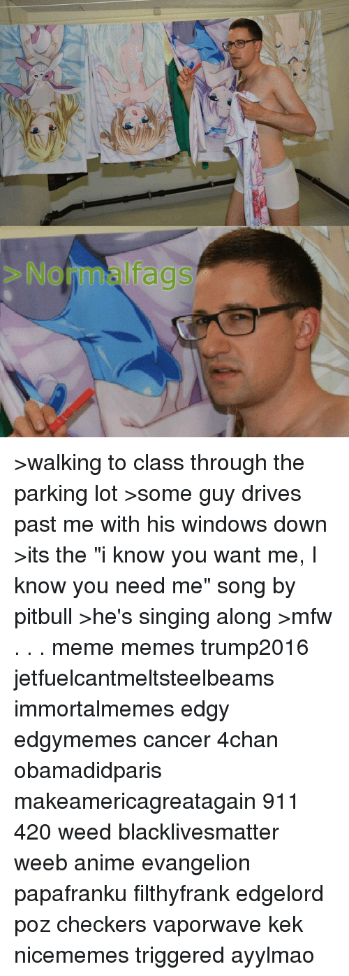"""Cancer 4Chan: NorInnslfags >walking to class through the parking lot >some guy drives past me with his windows down >its the """"i know you want me, I know you need me"""" song by pitbull >he's singing along >mfw . . . meme memes trump2016 jetfuelcantmeltsteelbeams immortalmemes edgy edgymemes cancer 4chan obamadidparis makeamericagreatagain 911 420 weed blacklivesmatter weeb anime evangelion papafranku filthyfrank edgelord poz checkers vaporwave kek nicememes triggered ayylmao"""