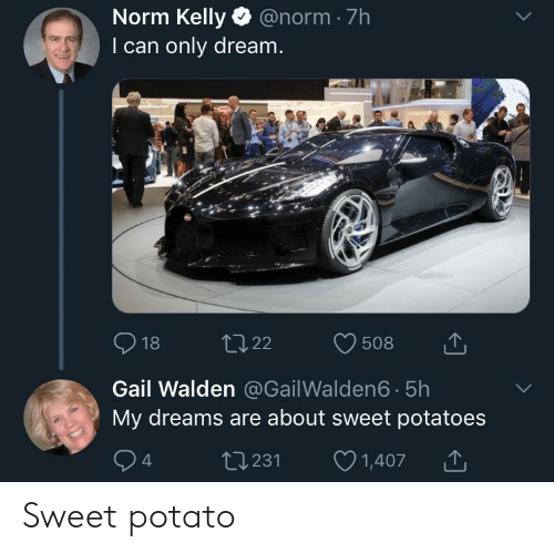 Norm Kelly: Norm Kelly @norm 7h  I can only dream.  918 t022 508  Gail Walden @Gail Walden6 5h  My dreams are about sweet potatoes  t0231 1  1,407 Sweet potato