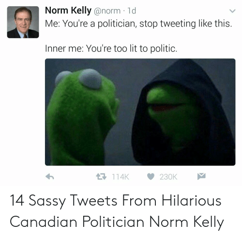 Norm Kelly: Norm Kelly @norm ld  Me: You're a politician, stop tweeting like this.  Inner me: You're too lit to politic  114K230K 14 Sassy Tweets From Hilarious Canadian Politician Norm Kelly