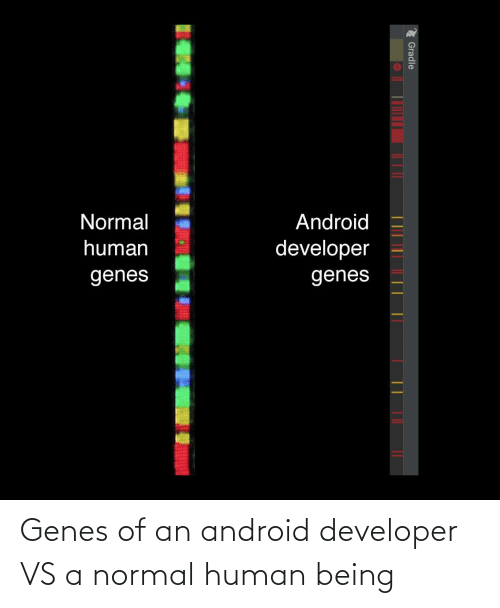 Android, Human, and Human Being: Normal  Android  human  developer  genes  genes  2 Gradle Genes of an android developer VS a normal human being