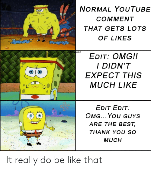 Be Like, Omg, and youtube.com: NORMAL YouTUBE  COMMENT  THAT GETS LOTS  OF LIKES  EDIT: OMG!!  I DIDN'T  EXPECT THIS  MUCH LIKE  EDIT EDIT  OMG...You GUYS  ARE THE BEST,  THANK YOU SO  MUCH It really do be like that