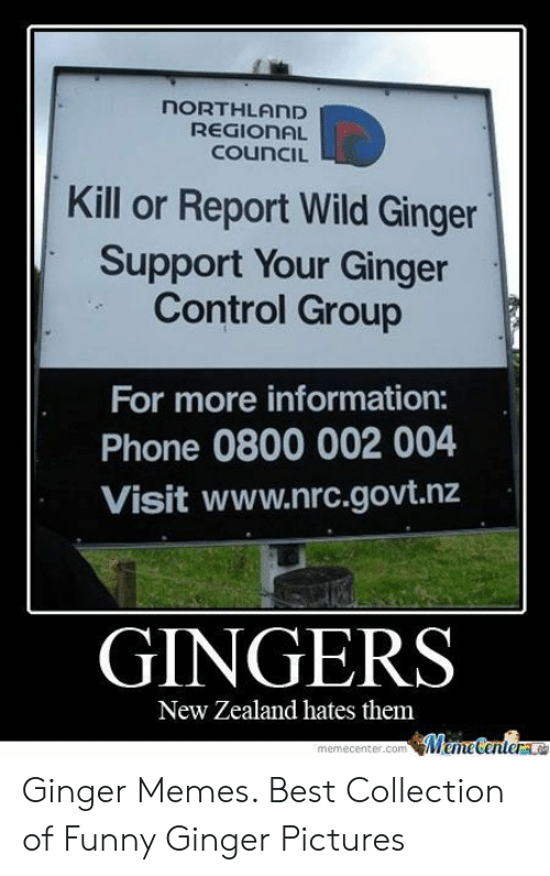Ginger Pictures: NORTHLAND  REGIONAL  CouncIL  Kill or Report Wild Ginger  Support Your Ginger  Control Group  For more information:  Phone 0800 002 004  Visit www.nrc.govt.nz  GINGERS  New Zealand hates them  MeneCentere  memecenter.com Ginger Memes. Best Collection of Funny Ginger Pictures