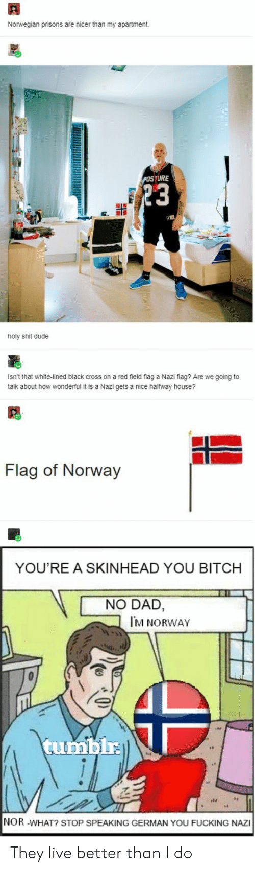 🐣 25+ Best Memes About Flag of Norway | Flag of Norway Memes