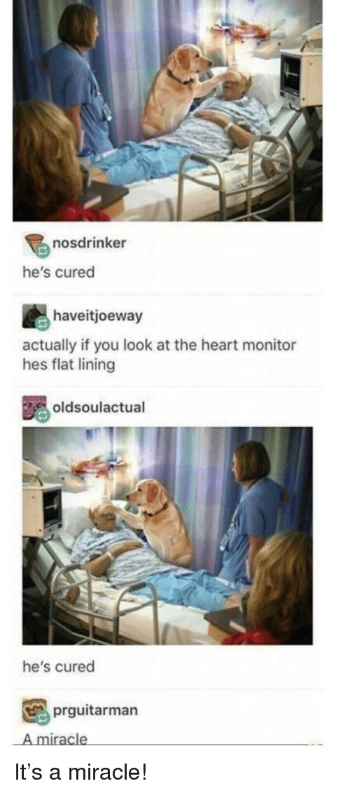 Heart, You, and The Heart: nosdrinker  he's cured  haveitjoeway  actually if you look at the heart monitor  hes flat lining  oldsoulactual  he's cured  prguitarman  A miracle It's a miracle!