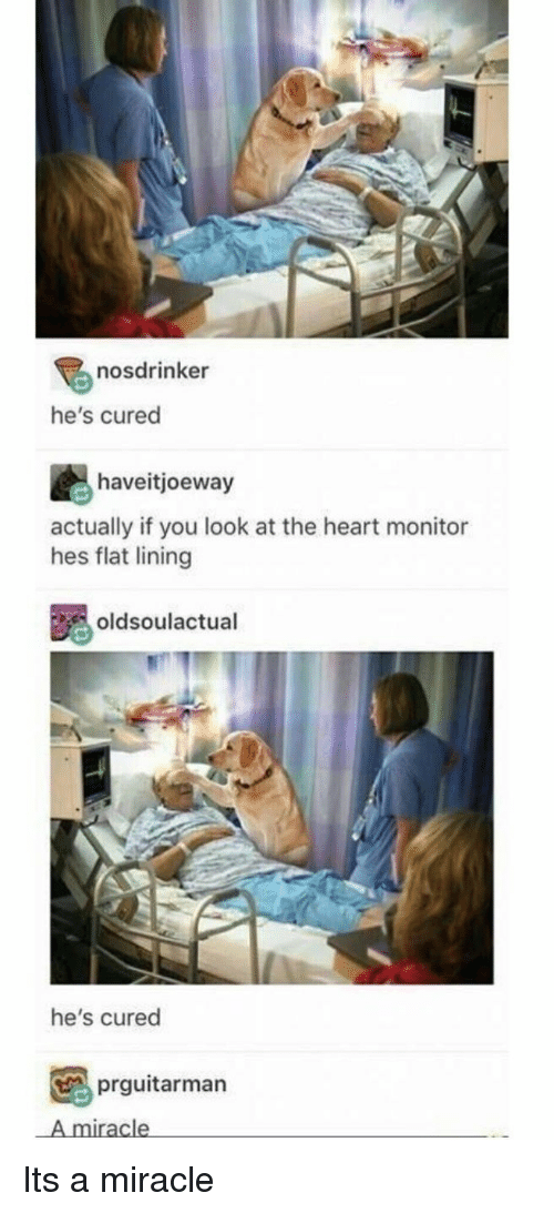 Heart, You, and The Heart: nosdrinker  he's cured  haveitjoeway  actually if you look at the heart monitor  hes flat lining  oldsoulactual  he's cured  prguitarman  A miracle Its a miracle