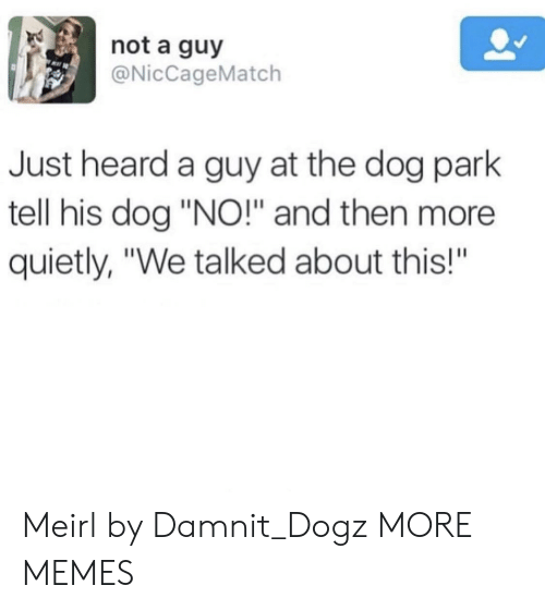"""Dog Park: not a guy  @NicCageMatch  Just heard a guy at the dog park  tell his dog """"NO!"""" and then more  quietly, """"We talked about this!""""  BA Meirl by Damnit_Dogz MORE MEMES"""