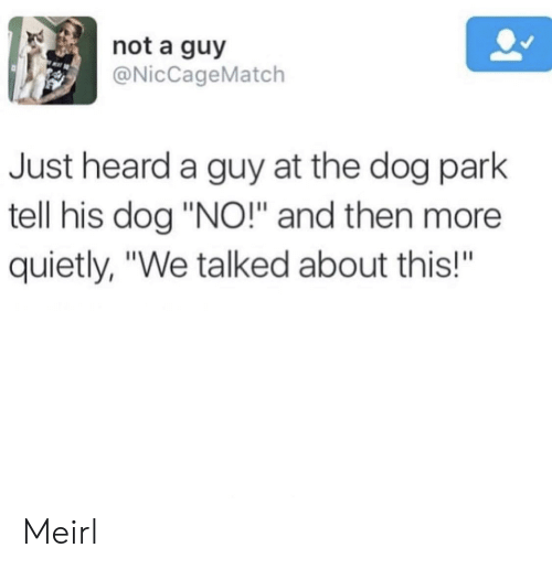 """Dog Park: not a guy  @NicCageMatch  Just heard a guy at the dog park  tell his dog """"NO!"""" and then more  quietly, """"We talked about this!""""  BA Meirl"""