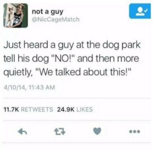 """Dog Park: not a guy  @NicCageMatch  Just heard a guy at the dog park  tell his dog """"NO!"""" and then more  quietly, """"We talked about this!""""  4/10/14, 11:43 AM  11.7K RETWEETS 24.9K LIKES"""