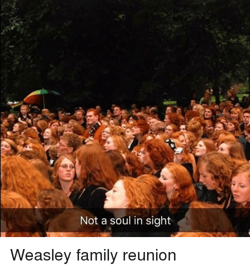 reunion: Not a soul in sight Weasley family reunion