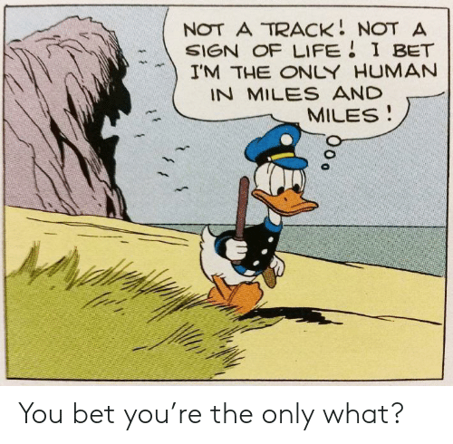 I Bet, Life, and Human: NOT A TRACK NOT A  SIGN OF LIFE I BET  I'M THE ONLY HUMAN  IN MILES AND  MILES You bet you're the only what?