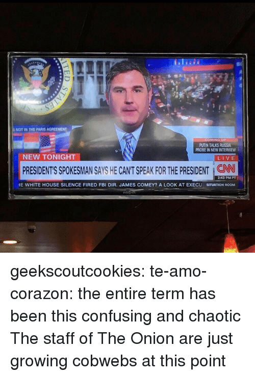 The Onion: NOT IN THE PARIS AGREEMENT  OMING UP  PUTIN TALKS RUSSIA  PROBE IN NEW INTERVIEW  NEW TONIGHT  LIVE  PRESIDENT'S SPOKESMAN SAYS HE CANT SPEAK FOR THE PRESIDENT : CAN  2:43 PM PT  E WHITE HOUSE SILENCE FIRED FBI DIR. JAMES COMEY? A LOOK AT EXECU SITUATION ROOM geekscoutcookies:  te-amo-corazon:  the entire term has been this confusing and chaotic  The staff of The Onion are just growing cobwebs at this point