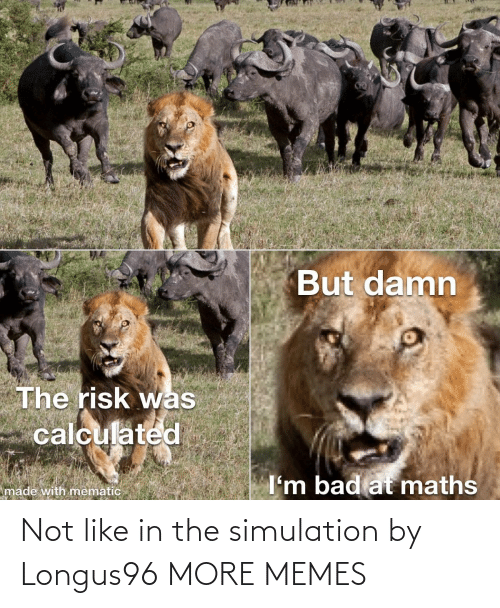 simulation: Not like in the simulation by Longus96 MORE MEMES