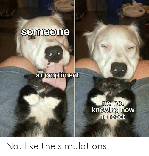 The: Not like the simulations